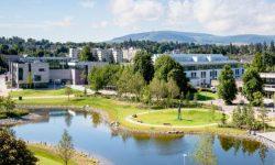 UCD_2017